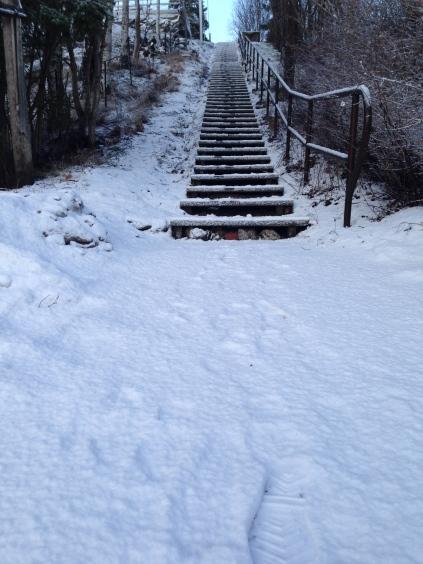 outdoor training utomhuspass stockholm pt personal trainer personlig tranare kostrad